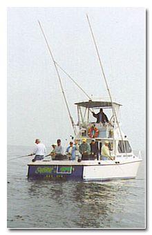 Sea Wolf fishing charters in Beaufort SC offshore fishing charters, deep-sea fishing, and Gulf Stream fishing charters.