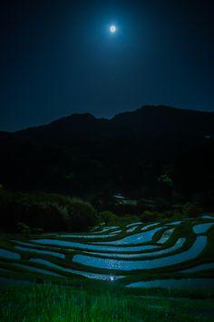 月夜の棚田 Ⅱ                                                                                                                                                                                 もっと見る