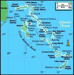 outline of florida state map shark attacks in