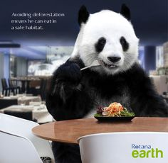 Avoiding deforestation means he can eat in a safe habitat. #RotanaEarth