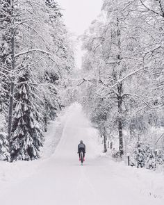 Cycling at snow