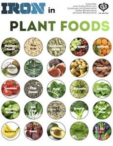 Iron Rich Plant foods-besides the list, this is as a great article about iron in general
