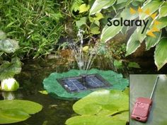 Lily Solar Fountain - Remote Controlled with LED Lights Code Fountain Head, Backyard Water Feature, Water Features In The Garden, Solar Water, Garden Fountains, Remote, Plant Leaves, Lights, Lily Pad
