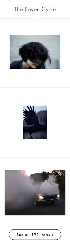 """""""The Raven Cycle"""" by missmoscato ❤ liked on Polyvore featuring pictures, photos, people, pics, hair, backgrounds, animals, raven, images and filler"""