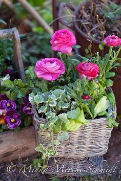 Blomsterverkstad: Blanda friskt