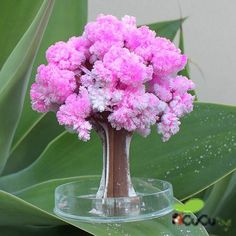 VBS Idea-Mad Scientist-Kids Science: Magical Cherry Blossom Tree *This is too cool Science Fair Projects, Science Experiments Kids, Science For Kids, Projects For Kids, Diy For Kids, Crafts For Kids, Cherry Blossom Tree, Blossom Trees, Preschool Science