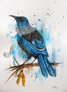 Tui Bird 4 - watercolour www.fiona-clarke.com Tui Bird, Zealand Tattoo, New Zealand Art, Jr Art, Sculpture Art, Metal Sculptures, Abstract Sculpture, Bronze Sculpture, Maori Art