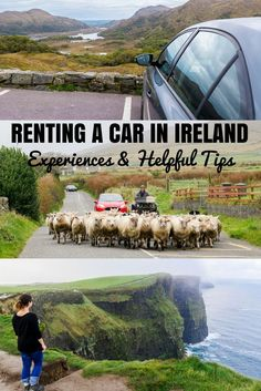 Renting a car in Ireland is the best way to see the country. Travel to Ireland and Northern Ireland at your own pace with a car rental. Here are some tips! Renting a Car in Ireland: Experiences and Helpful Tips Ireland Travel Guide, Europe Travel Tips, Travel Guides, Travel Hacks, Travel Destinations, European Travel, Time Travel, Bushcraft Camping, Belfast
