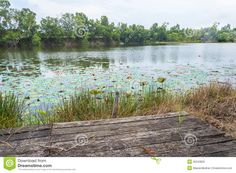 old wooden platform - Google Search