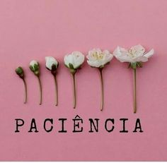 P A T I E N C E It means Patience HEALING JOURNEY LEAVING & HEALING