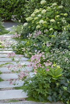 Garden Arbor, Side Garden, Garden Paths, Garden Landscaping, Back Gardens, Outdoor Gardens, Woodland Garden, Natural Garden, Garden Cottage