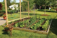 Easy-to-Build Raised Bed Gardening Plans Using Reclaimed Lumber --  Getting started in raised bed gardening is easy and offers a great many ben...