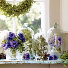 Warm up a winter window Violet anemone and hyacinth blooms, seeded eucalyptus, and green berries are displayed like rare specimens in bell jars below a winter wreath. The Bell Jar, Bell Jars, Glass Dome Display, Glass Domes, Cloche Decor, Earthy Decor, Design Floral, Arte Floral, Glass Containers