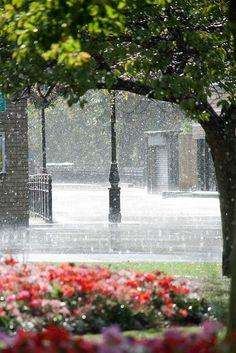 voorjaars regen.