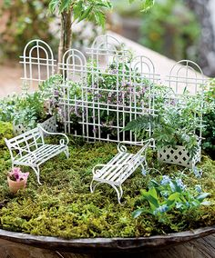Jeremie | Miniature garden white trellis and garden benches in a metal container.