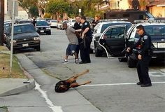 Why are police shooting so many family dogs?