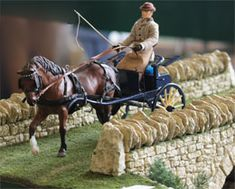 Image result for model horse show