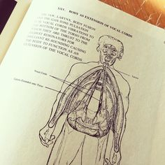 """This will always be my favourite garbage pedagogy illustration. [photo of an illustrated person with vocal cords covering their torsos. The title says """"Body as an extension of vocal cords""""]"""