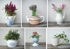 DIY, upcycling: Perhaps you have got somewhere a beautiful teapot standing around, which unfortunately leaks or a cup that has a crack? Don´t throw them away, just plant them!