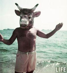 Picasso e a cabeça de vaca