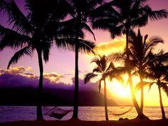 paisaje de hawaii