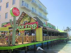 Senior Frog's Nassua, Bahamas. Must visit when you join us on the Best Cruise Ever! #excursions #bestcruise