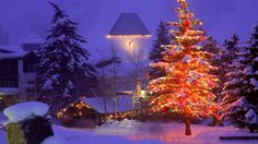 Free Beautiful Christmas Tree In Christmas Village Wallpaper ...