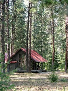 perfect cabin in the woods--I love red-tin roofs on cabins, & when it rains, it sounds like music.