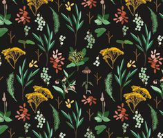 herbal_study_dark fabric by holli_zollinger on Spoonflower - custom fabric