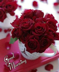 Beautiful Flowers Pictures, Beautiful Flowers Wallpapers, Beautiful Rose Flowers, Flowers Gif, Happy Birthday Flower, Happy Birthday Wishes, Birthday Greetings, Bisous Gif, Sunday Rose
