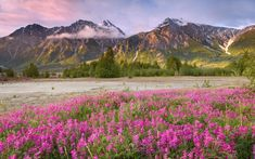 spring nature pictures | Nature Spring Mountain HD Wallpaper 150x150 Nature Spring Mountain HD ...