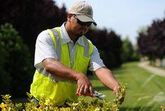 Home Improvement Companies, Lawn Care, A Team, No Worries, Landscape, Scenery, Lawn Maintenance, Corner Landscaping