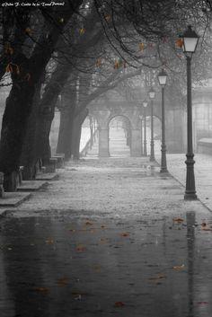 Noviembre, otoño en El Escorial by Pedro Francisco  Condés de la Torre on 500px