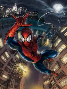 The Amazing Spider-Man // artwork by Meghan Hetrick (2013)