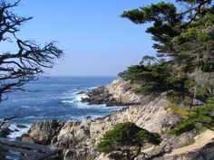 17 Mile Drive, Carmel, CA..glad that i was able to see this scenic place.  One of the most peaceful places I've visited.