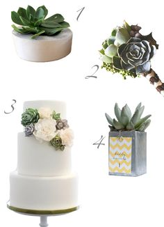 I want a succulent themed wedding.