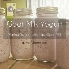 Goat Milk Yogurt - Making Yogurt with Raw Goat Milk - Quiver Full Farms - Health and wellness: What comes naturally Homemade Yogurt Recipes, Goat Milk Recipes, Dairy Recipes, Fun Recipes, Fermentation Recipes, Canning Recipes, Instapot Yogurt, Making Yogurt, Raw Milk