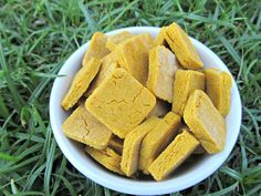 (gluten, wheat, dairy-free, vegan, vegetarian) easy peasy peanut butter pumpkin (doggydessertchef.com)