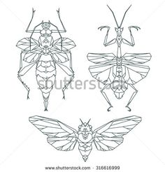 Insect icons, vector set. Abstract triangular style. Mantis, moth, beetle