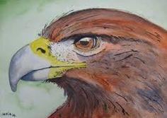 Aigle royal par idolie pinterest rapaces dessins de et oiseaux - Dessin d aigle royal ...
