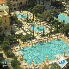 Elegant pool days at Bellagio