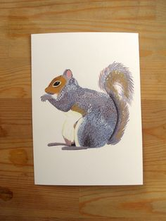 can't get over this shop tonight. (Gray Squirrel 5x7 Print. $10.00, via Etsy.)