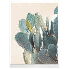Wilder California Cactus Detail Print - Framed ($72) ❤ liked on Polyvore featuring home, home decor, wall art, wooden home decor, photography wall art, framed wall art, white wall art and wooden wall art