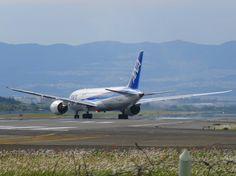 ANA 787-8 JA817A
