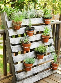 23 Creative Vertical Garden Ideas for Small Backyard Garden and Outdoor Herb Garden Pallet, Pallets Garden, Wood Pallets, Balcony Herb Gardens, Garden Planters, Vertical Gardens, Tiny Balcony, Patio Plants, Terrace Garden
