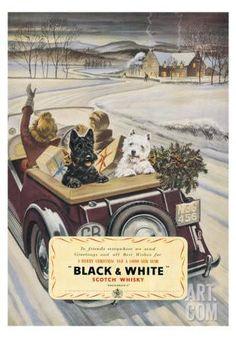 Black & White Scotch Whisky Art Print at Art.com                                                                                                                                                     More