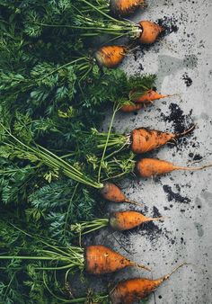 Carrots | Food Photography Styling