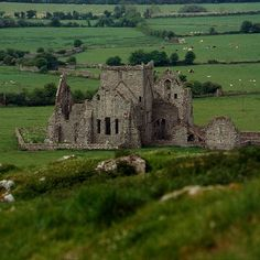 Hore Abbey at Cashel, Ireland ~ photo by KagedFish
