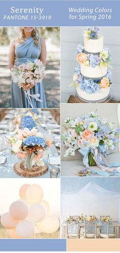 Serenity and Peach Wedding Colors (I would add Rose Quartz) Wedding Themes, Wedding Decorations, 2016 Wedding Trends, 2016 Trends, Wedding Bouquets, Wedding Flowers, Wedding Dresses, Peach Springs, Dream Wedding