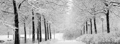 Winter Holidays - Christmas Facebook Covers - Facebook Covers, FB ...